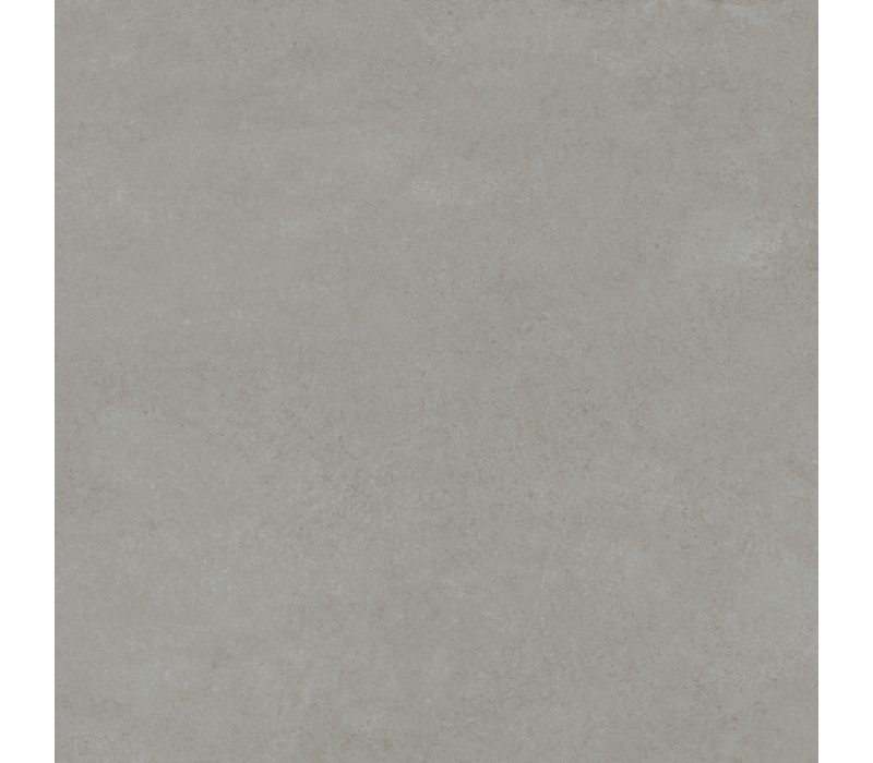 Charlotte / Grey (60x60)