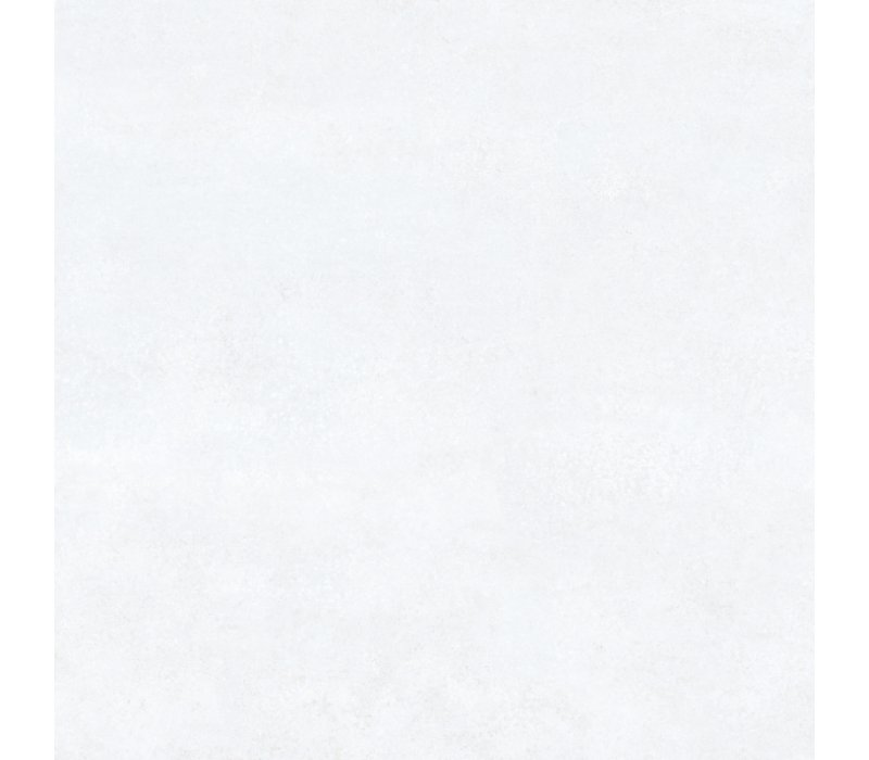 Charlotte / White (80x80)