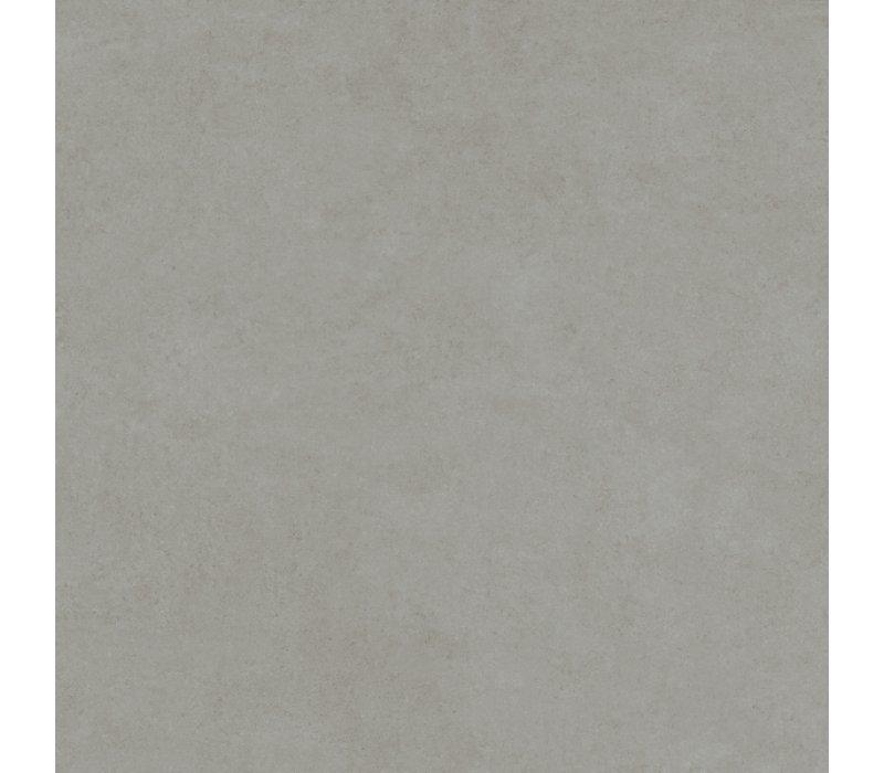 Charlotte / Grey (80x80)